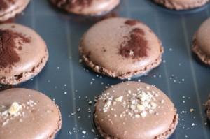 Haselnuss und Kakao drueber
